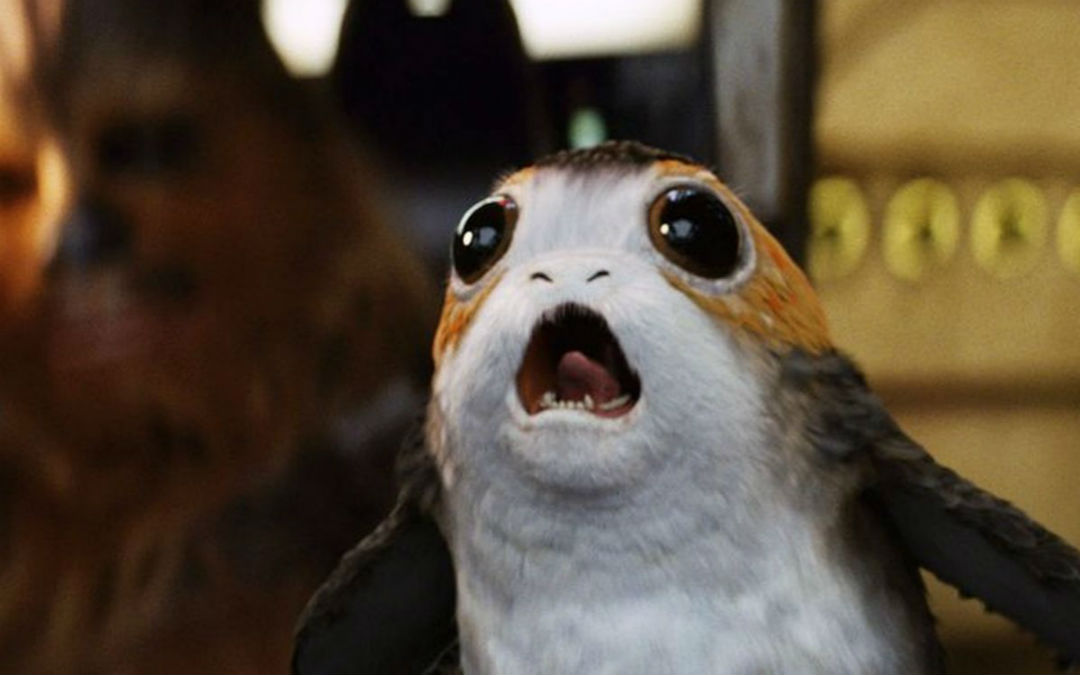 A Porg from 'Star Wars: The Last Jedi.'